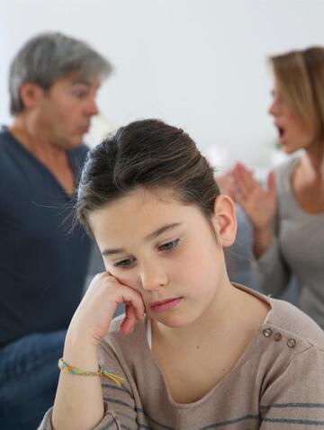 child custody greenville illinois